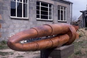 Spring 1984 Beech wood